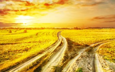 Two Roads – Which Will You Choose?