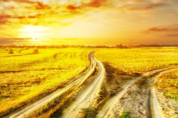 Image of 2 paths diverging in different directions with golden sunset in background