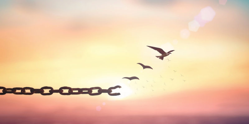 header image-broken chain birds flying free in sunrise sky